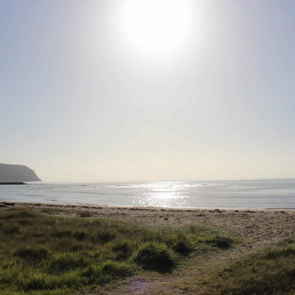 East Wynyard To Table Cape