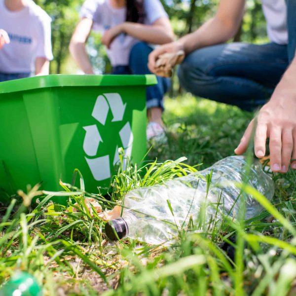 Waratah Wynyard Council Waste Management (5)